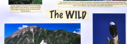 North Fork-The Wild: Our Wild Places Have Inherent Value